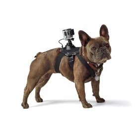 Крепление MSCAM Fetch Dog Harness for GoPro, SJCAM